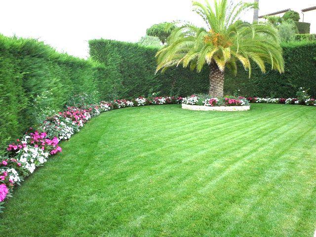 Jardin avec gazon en plaques Nous avons conçu le jardin