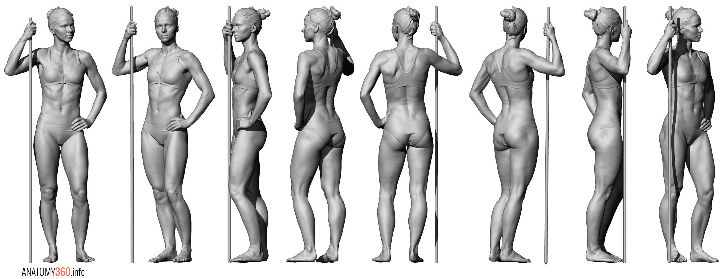 Pin By Shoyih 5 On Pose Pinterest Anatomy Body Reference And