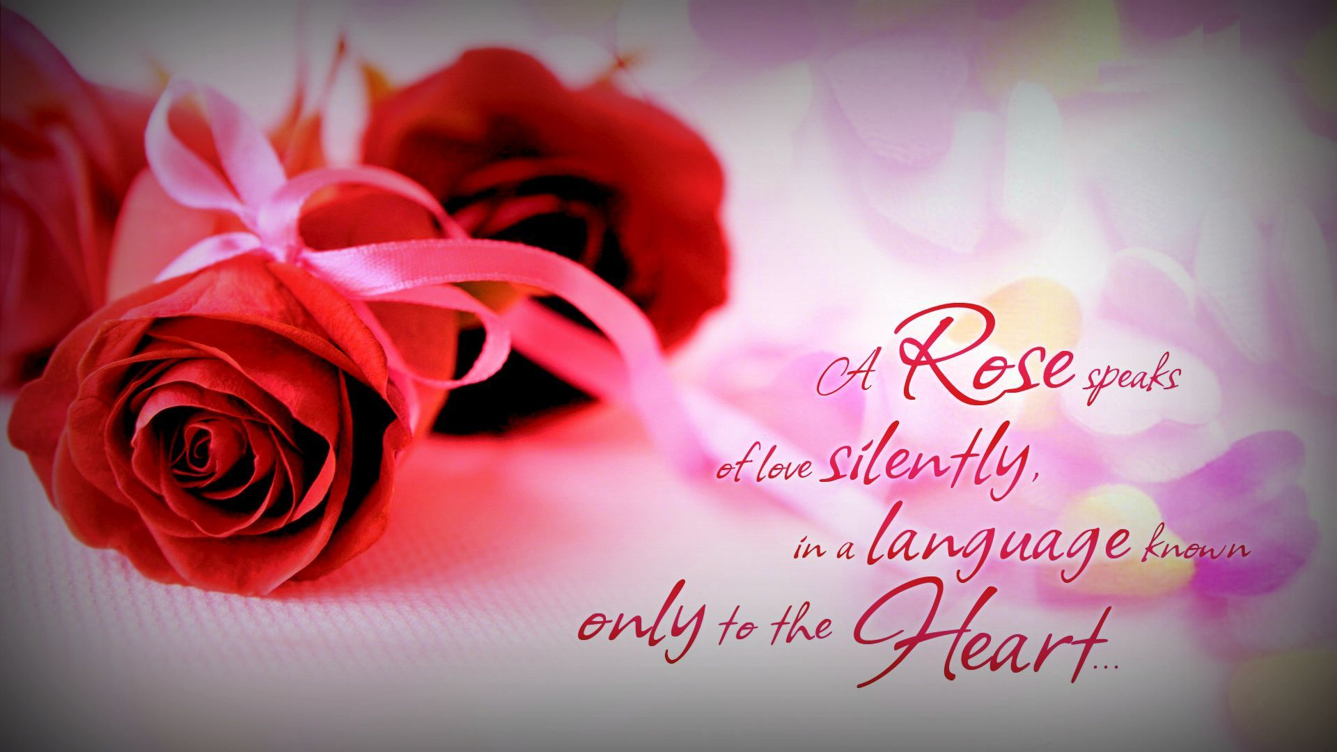 A Rose Speaks Relationships Love Wallpaper Love Quotes