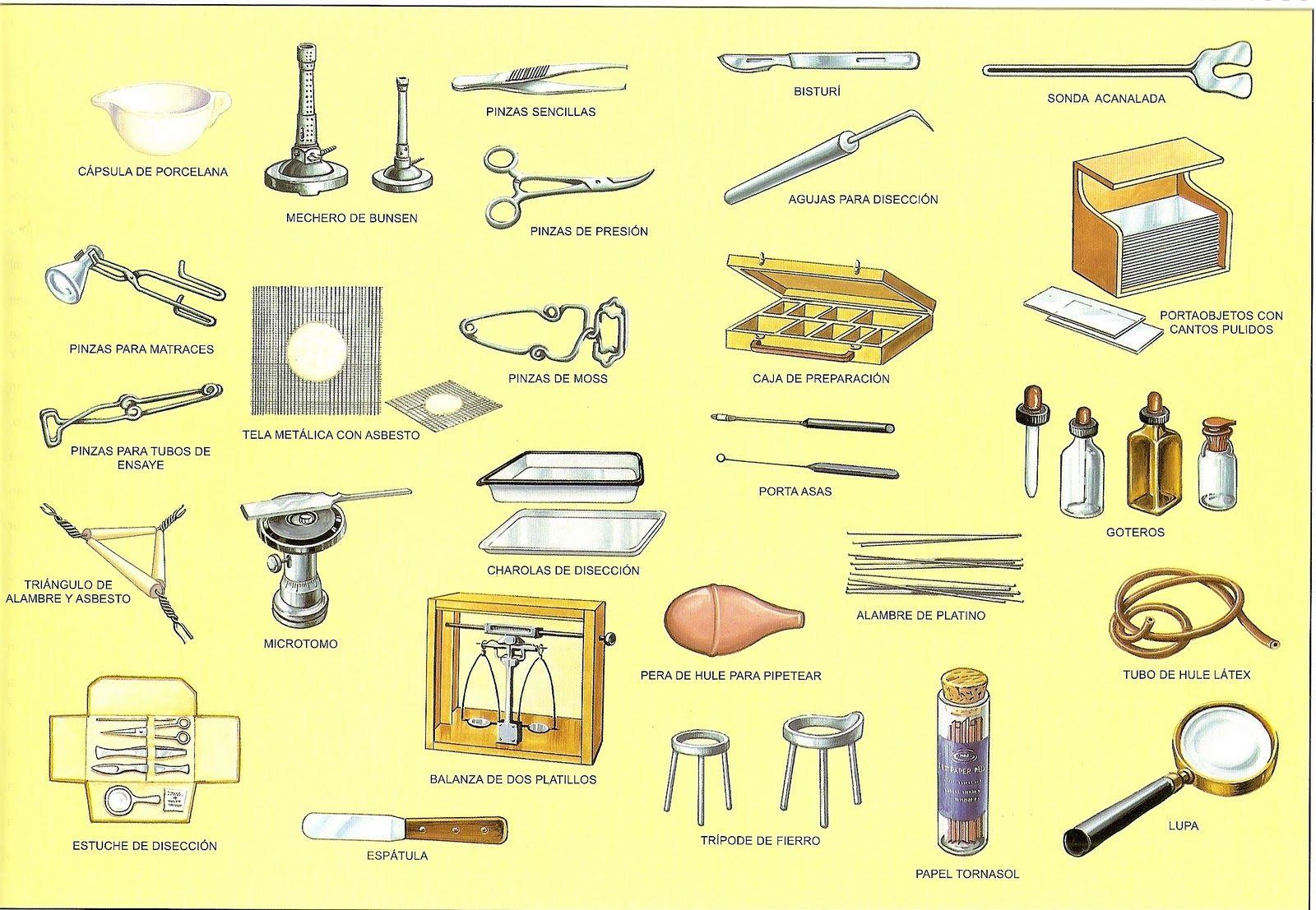 Instrumentos Laboratorio En 2021 Materiales De Laboratorio Laboratorio Instrumentos