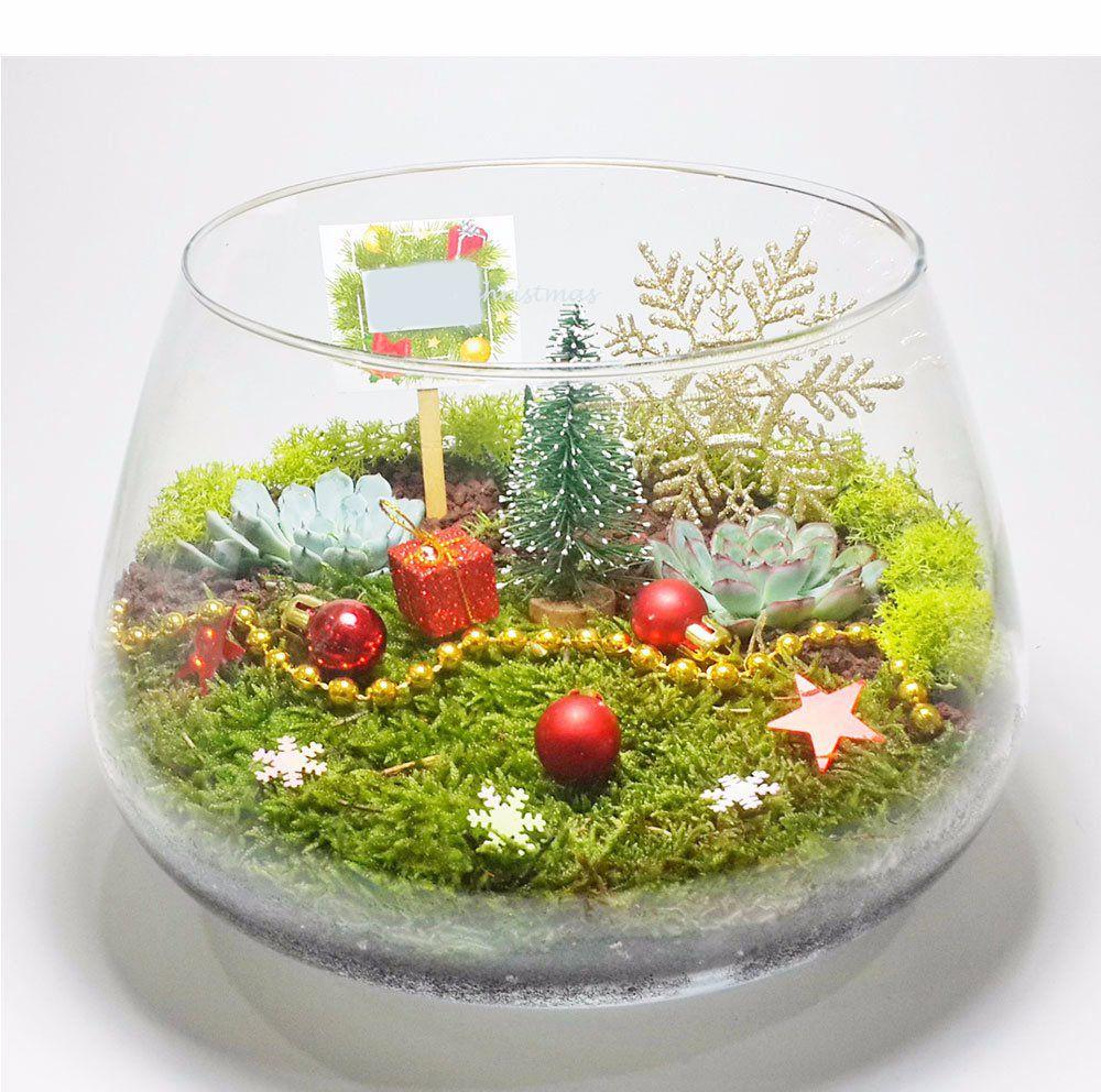 Luxury Terrarium Gifts For Christmas 2019christmas