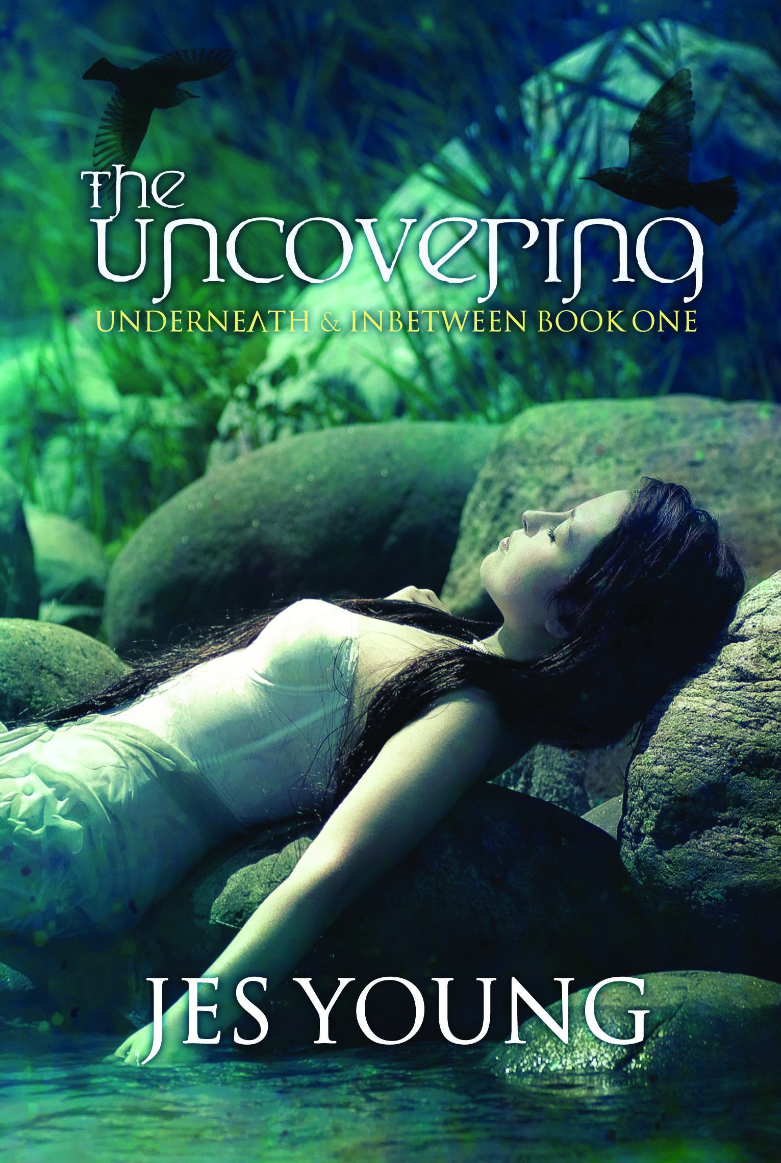 TheUncovering