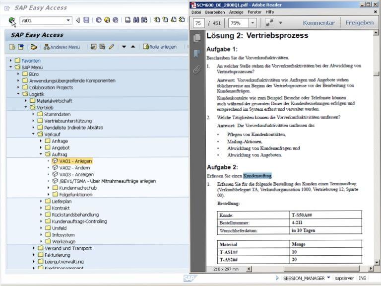 resume of sap mmpv login fb