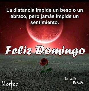 Feliz Domingo Mensajes Feliz Dia Sunday Greetings Good Morning