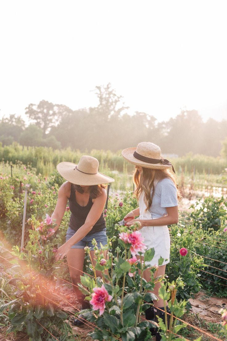 Have you ever dreamed of becoming a flower farmer? Julia Engel takes you to Flourish Flower Farm, a beautiful flower farm, in Asheville, North Carolina. Beautiful flower field. Pretty pink flowers. Plant lady garden goals.
