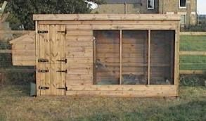 guinea fowl shelter