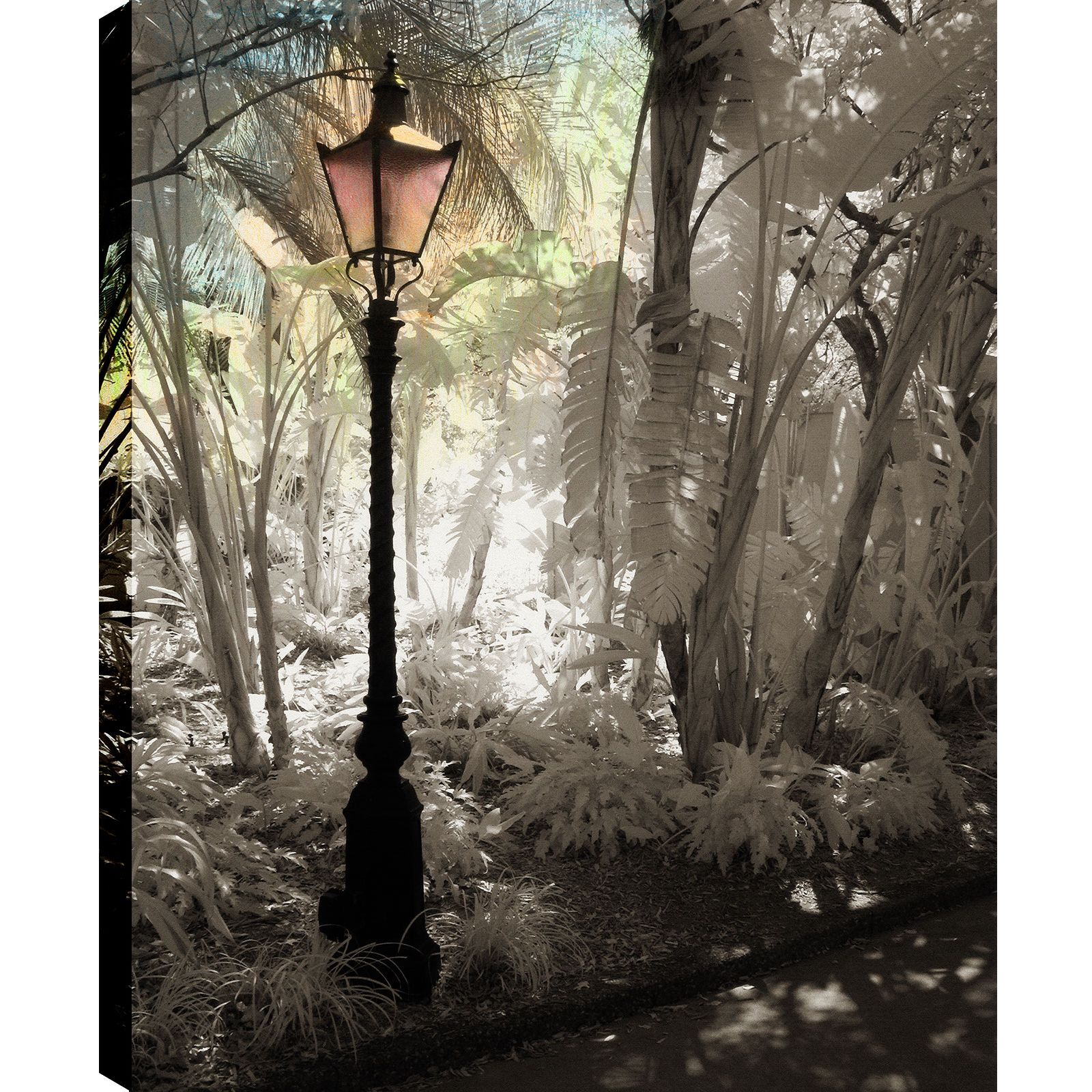 P.T. Turk 'Street Lamps Iii' Landscape Photography Wall Art