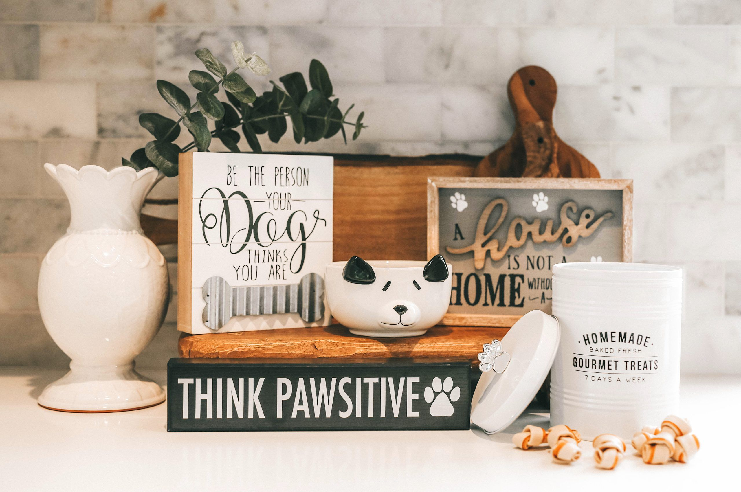 Pamper Your Pet On A Budget Nashville Life And Style Dressed To Kill In 2020 Pastel Home Decor Your Pet Pet Hacks