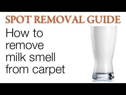 Remove Spoiled Milk Odors from a Car's Interior | My life