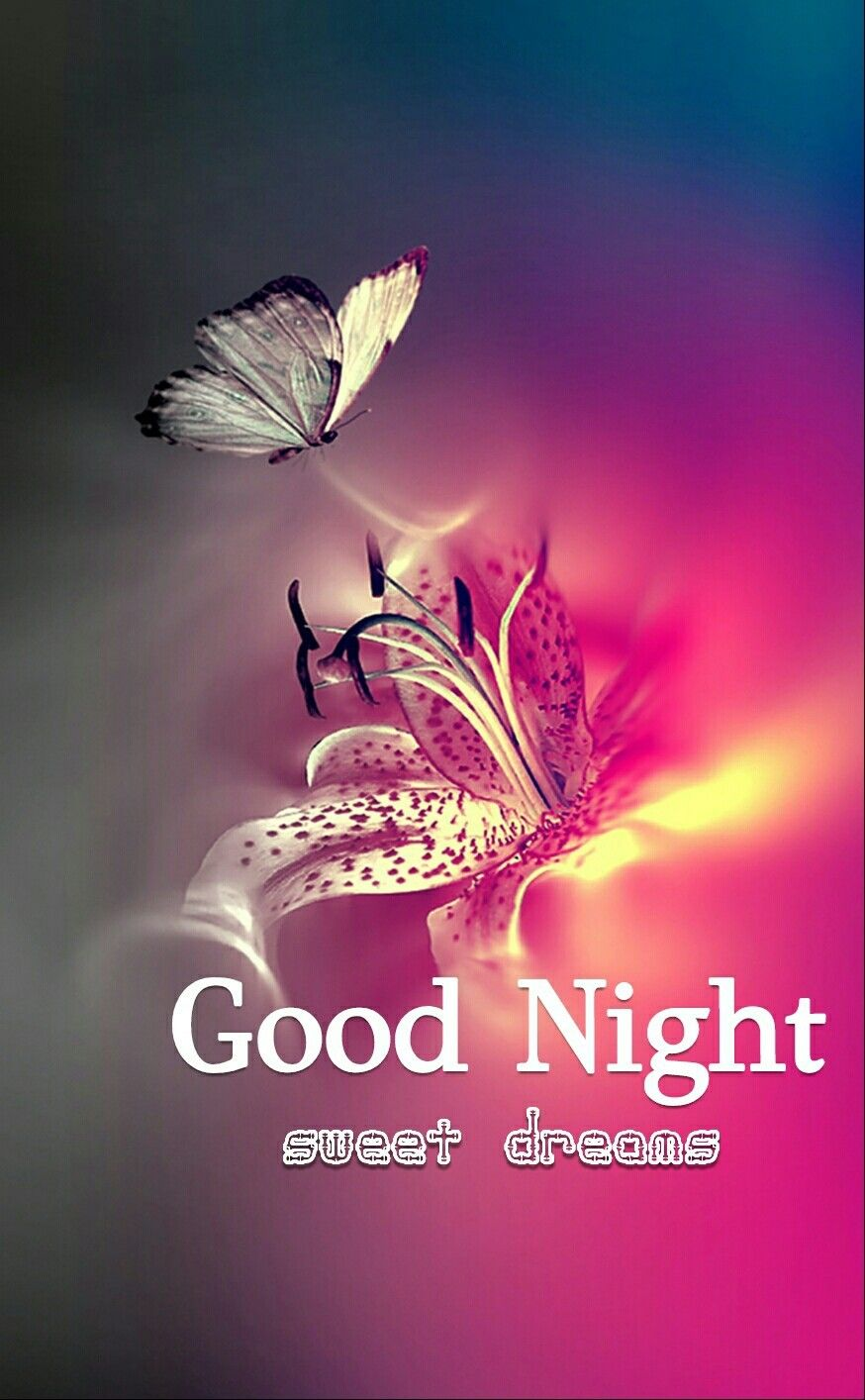 Goodnight sister sweet dreams  | Good night quotes