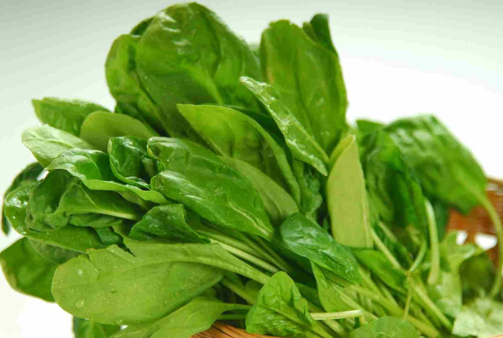 الفوائد الصحية للسبانخ كنت تعرف دي Most Healthy Vegetables Nutrition Tips Healthy Vegetables