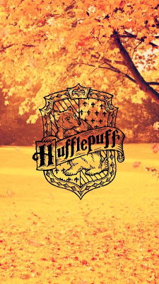 Lockscreen Harry Potter Tumblr Huffelpuf Harry Potter