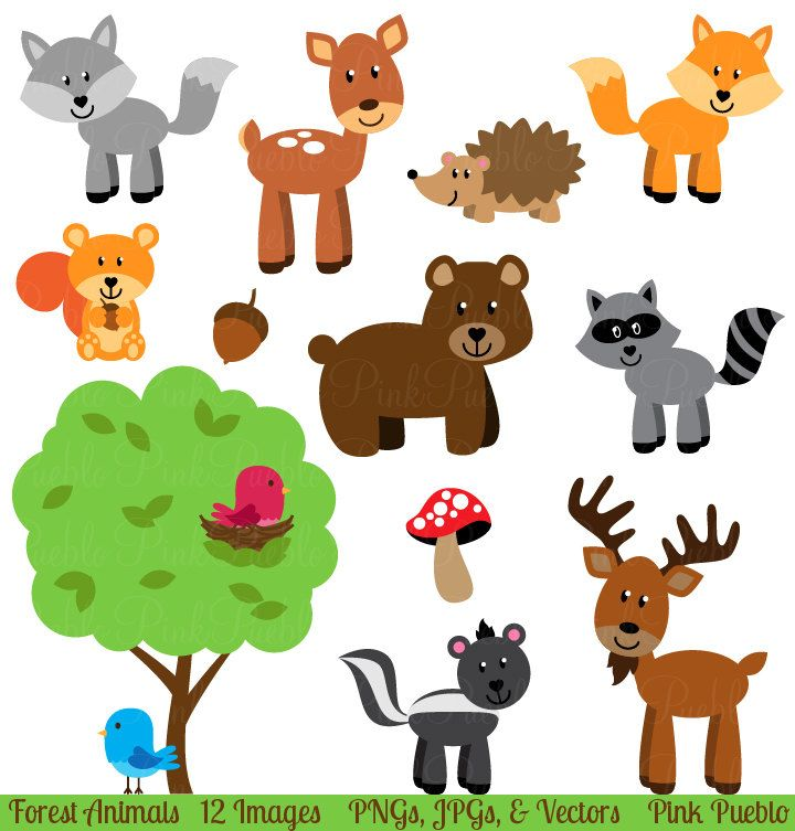 Forest Animal Clip Art, Forest Animals Clipart, Woodland Animal ...