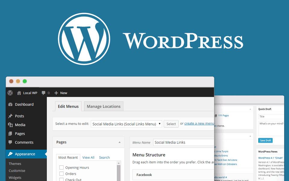 Google custom search wordpress thesis