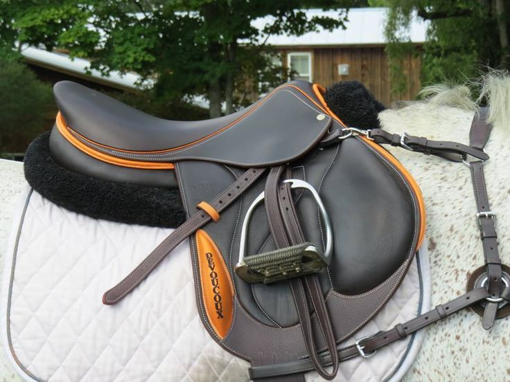 Gorgeous two tone Devoucoux | Equestrian outfits, Equestrian