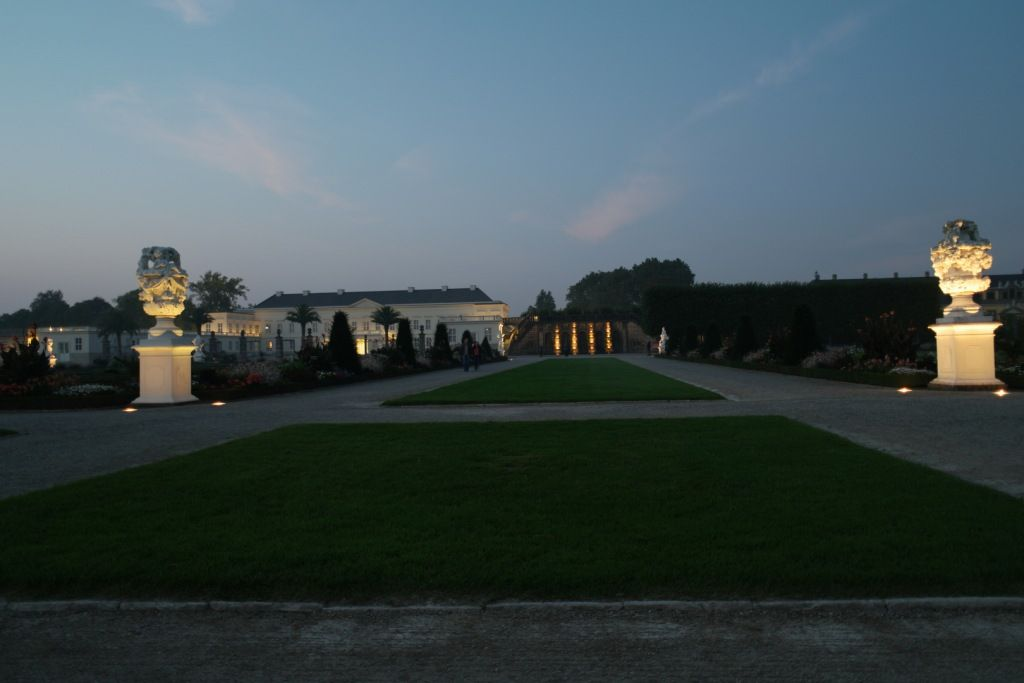 Titanwurzblute Im Berggarten Hannover Herrenhausen Mit Bildern Garten Immobilienmakler Hannover