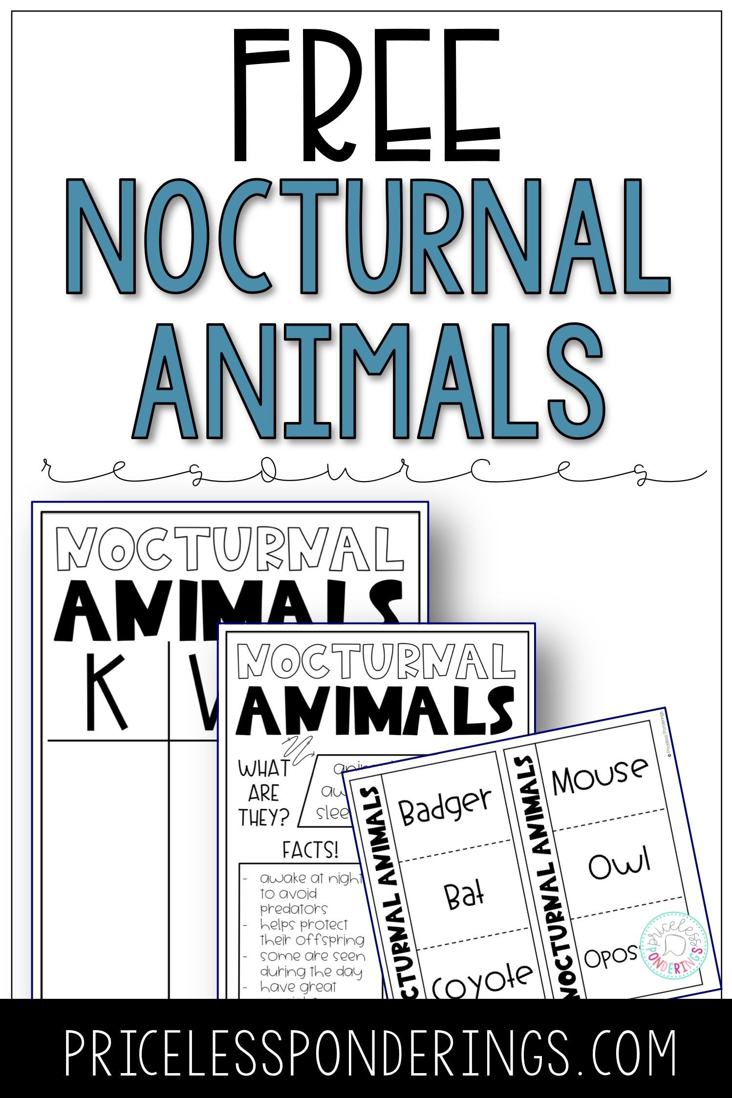 Save Time By Grabbing These Free Nocturnal Animal