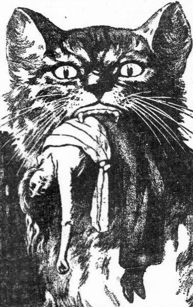 10 Fascinating Cat Superstitions - StrangeAgo