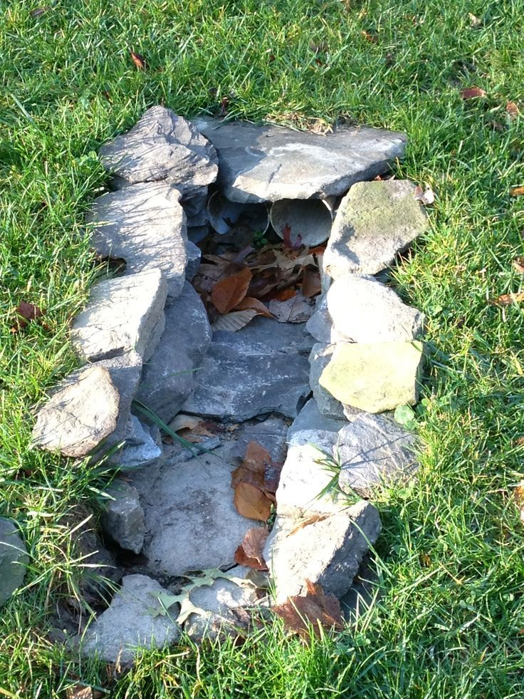 Image result for sump pump drainage landscaping   Front ...