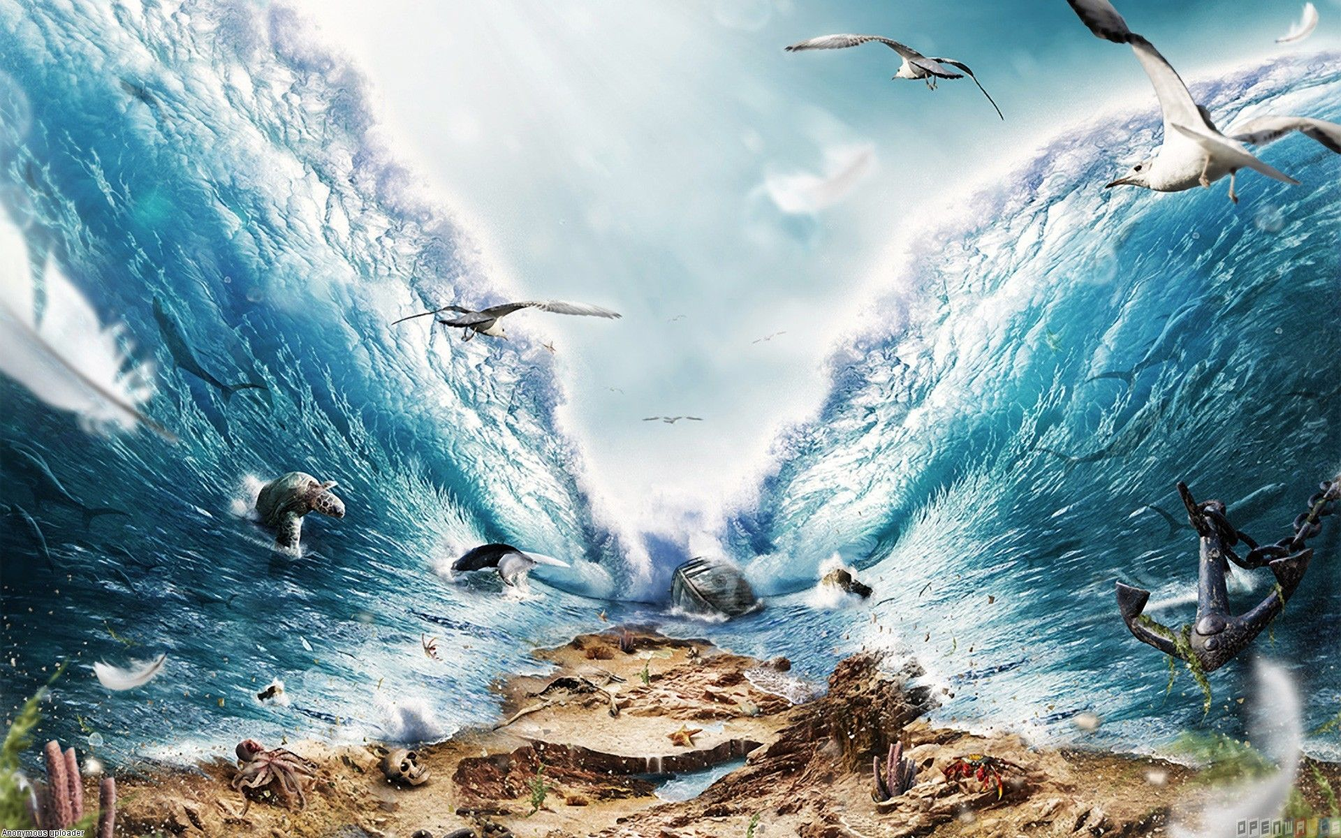 Where Is the Red Sea | Crossing the red sea wallpaper #13482 ...
