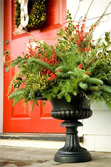outdoor holiday planters | Fresh Holiday Greens | Mahoney's Garden Centers