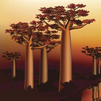 El Baobab Leyenda Africana Para Niños Africanas Plantas De La Selva Leyendas