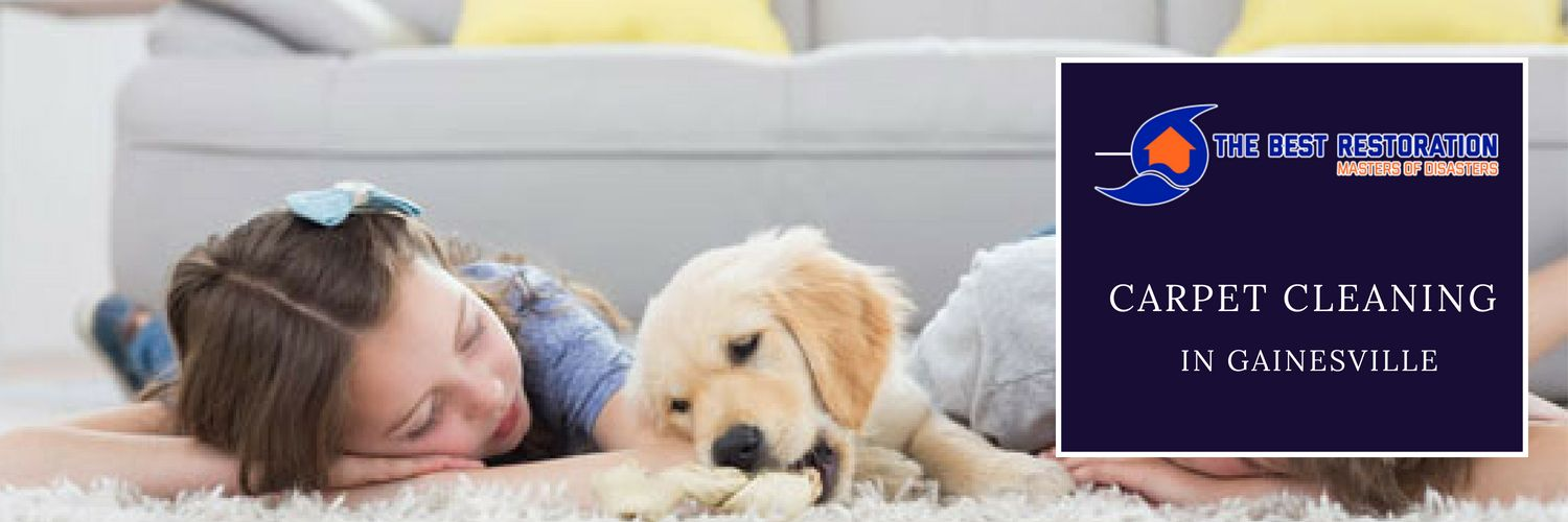 Contact The Best Restoration And Get Best Carpet Cleaning Service