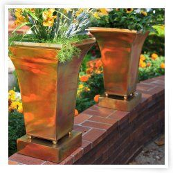 Stainless Steel/Copper Plated Pot