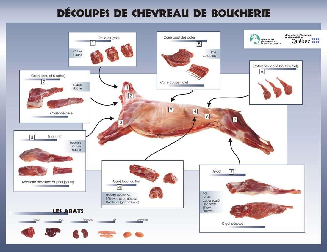 Les Coupes De Viande De Chevreuil Date De Dernière Mise à Jour