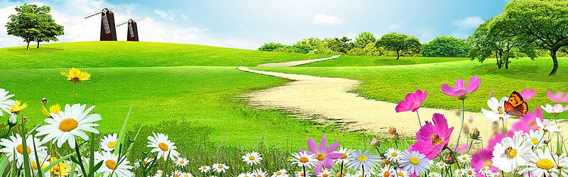 Paisagem Grass Campo Rural Background Background Images Natural Scenery Studio Background Images