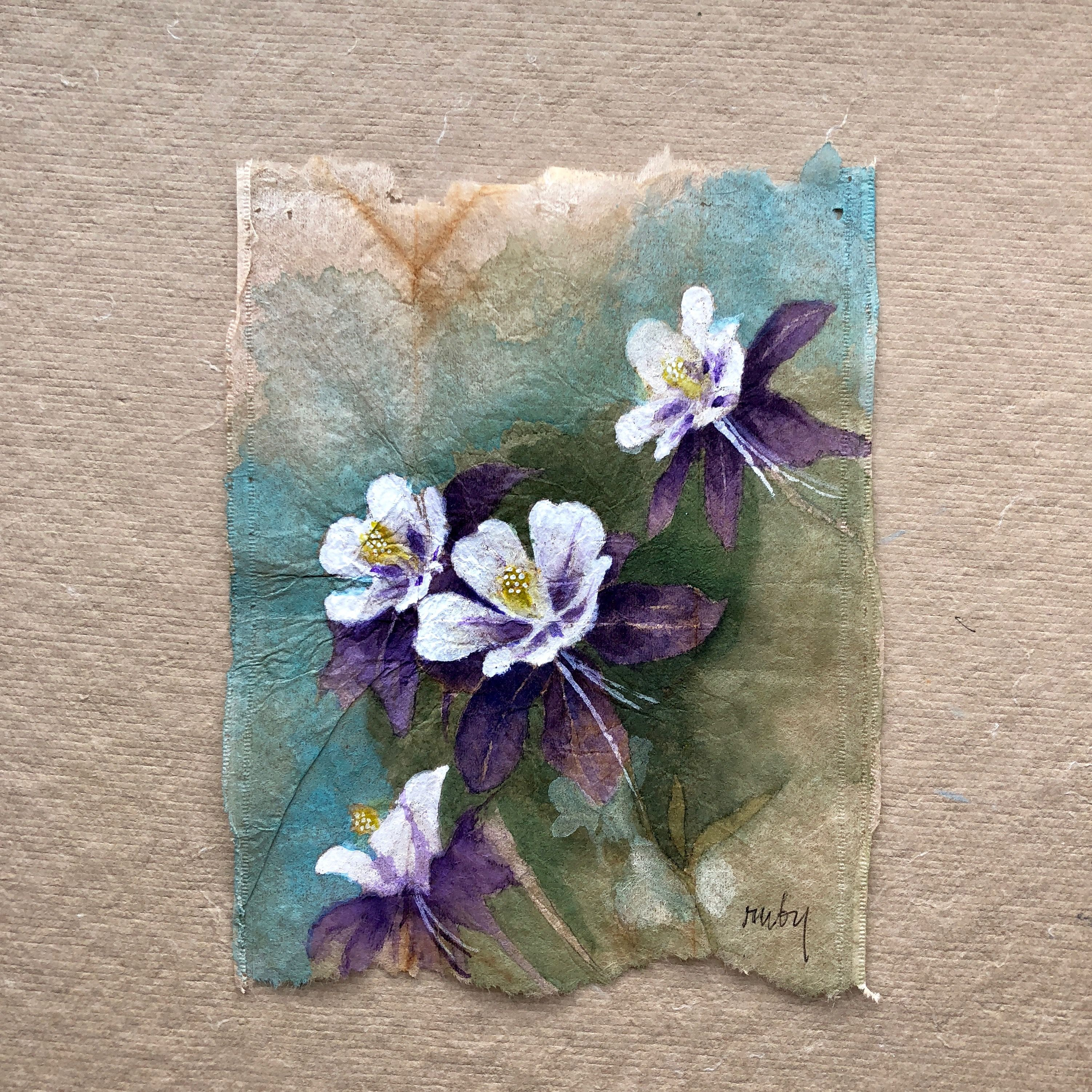Columbines Colorado S State Flower Will Feature At This Year S