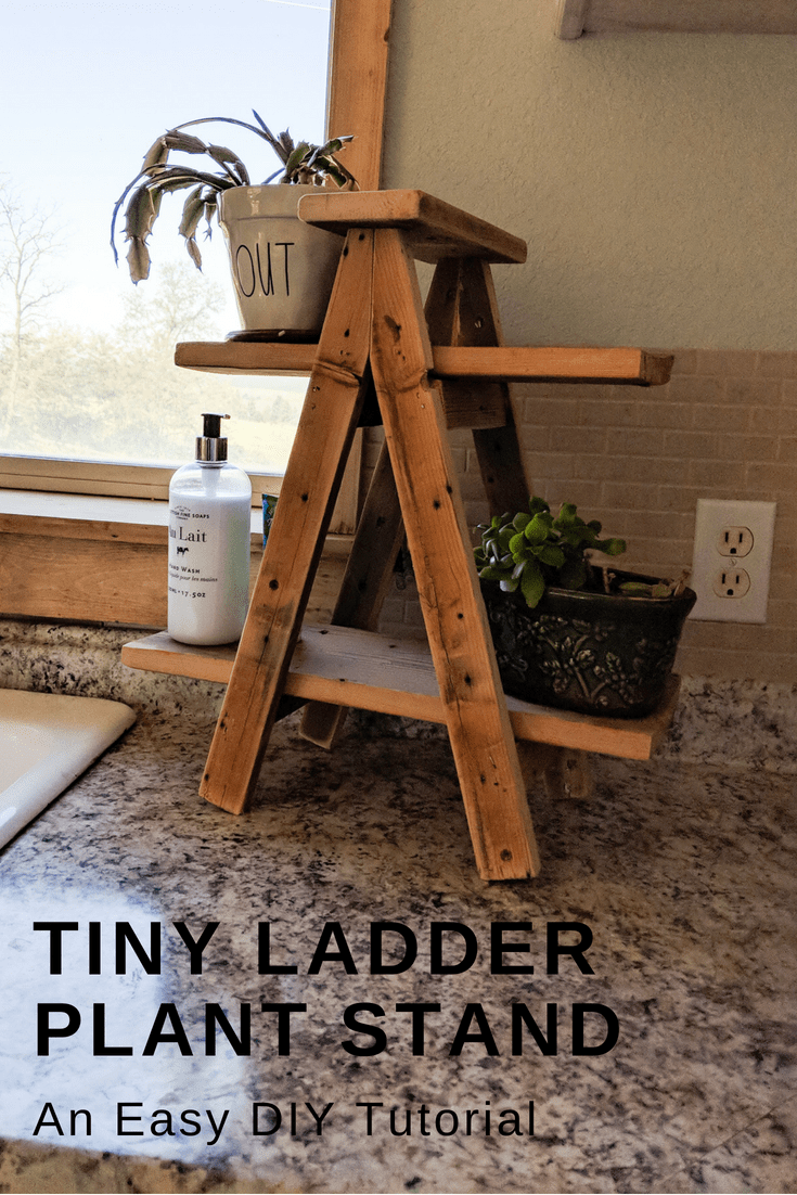 Tiny Ladder Plant Stand - My Happy Simple Living #woodprojects