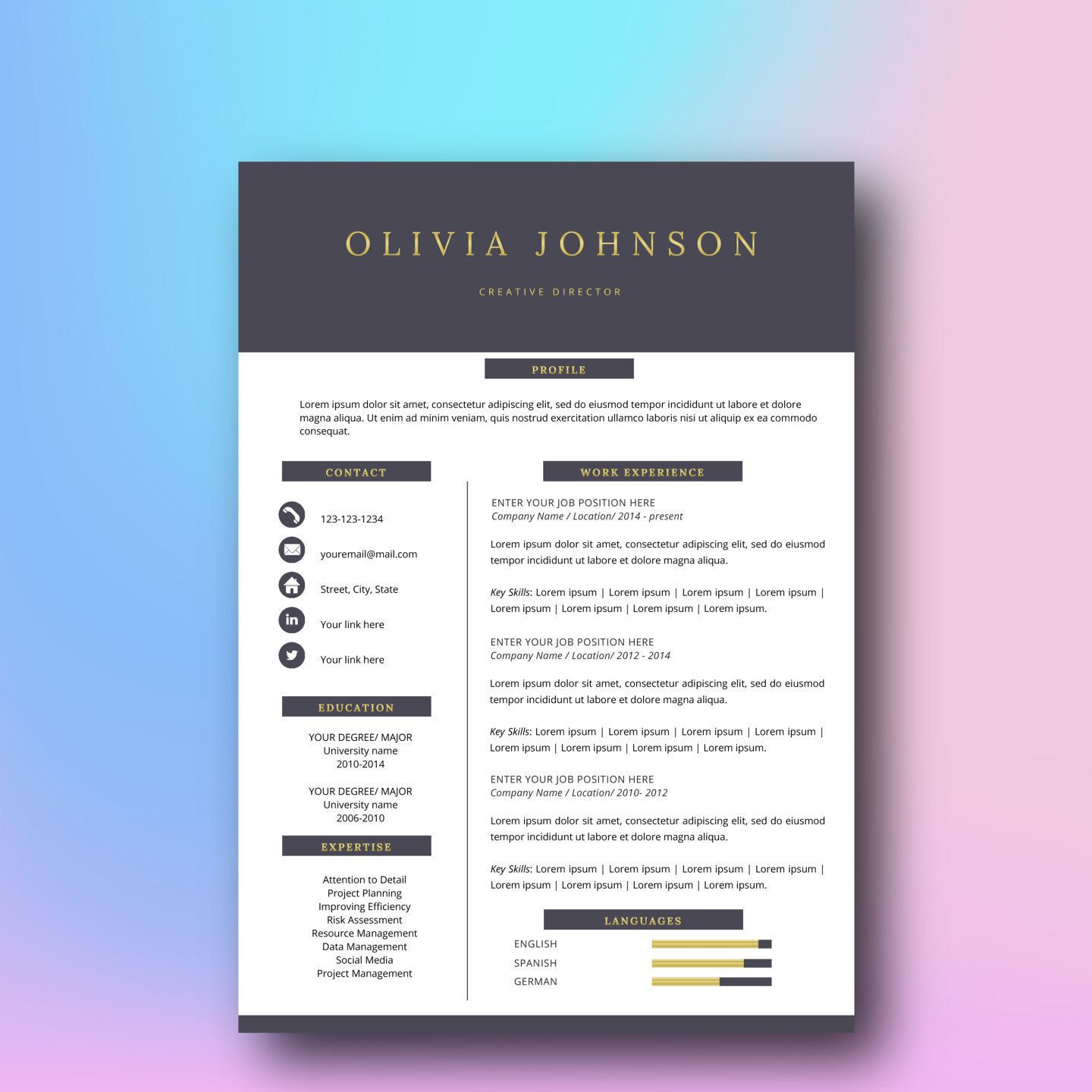 Professional Resume Template  Page Cv Template For Word