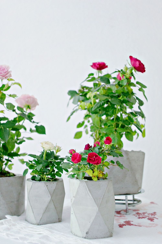 DIY | Concrete Planter