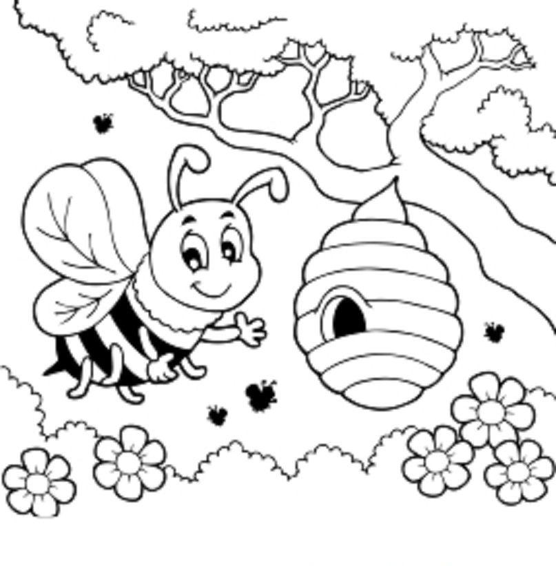 kleuren kleurplaten bijen thema honingbijen