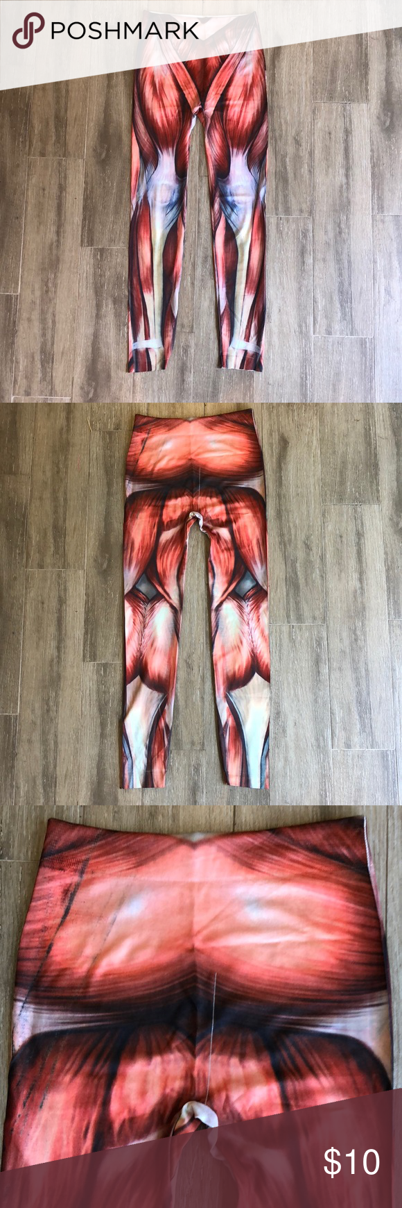 Muscle Leggings Here Are The Human Anatomy Muscle Leggings I
