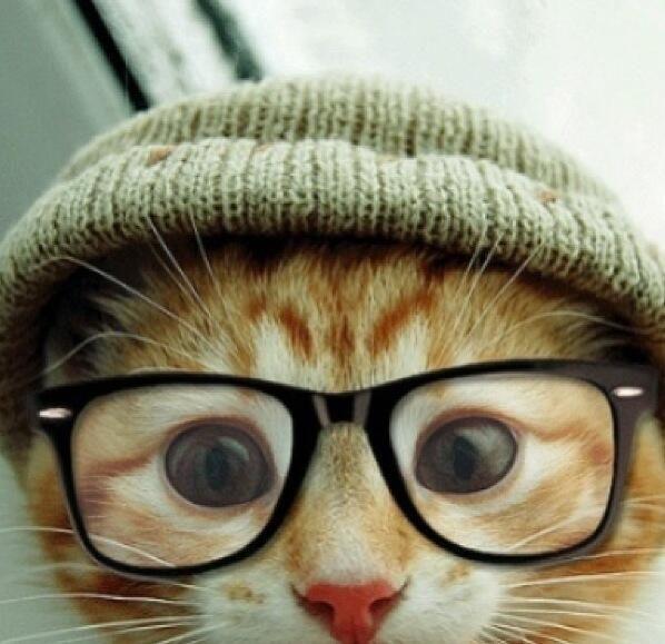jo, ik ben een hippe kat