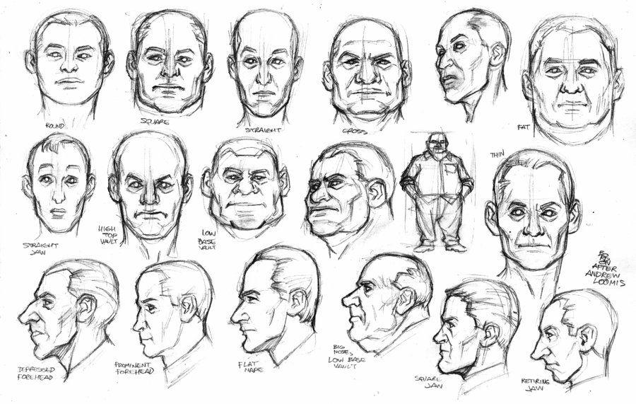 Andrew Loomis Exercises Studies 2 Andrew Loomis Anatomy Sketches Loomis