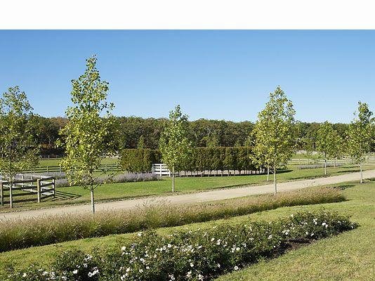 Farm Landscape Design Ideas | Landscape Design Architect Richard Johnson    Willow Farm