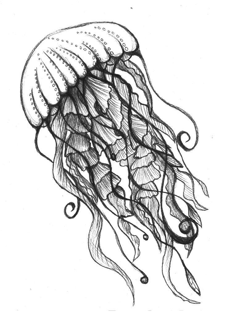 colored pencil drawings of underwater ocean drawing