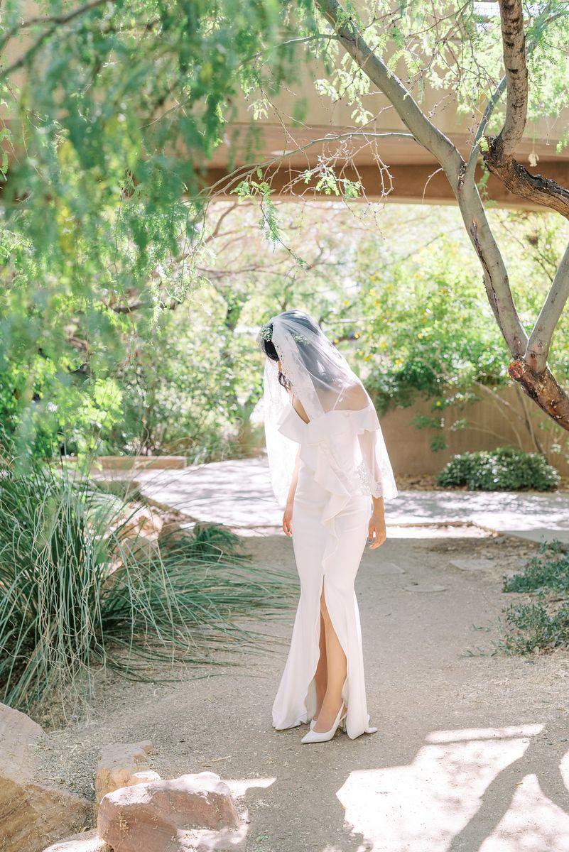 849aaf4ca1d1ead41d7b745e49a44153 - The Gardens At The Las Vegas Springs Preserve