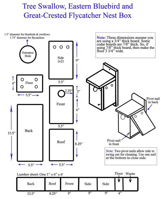 bluebird nest box plan nest box tips erect boxes in large, open