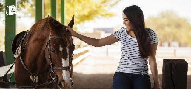 centre equestre kerdoen