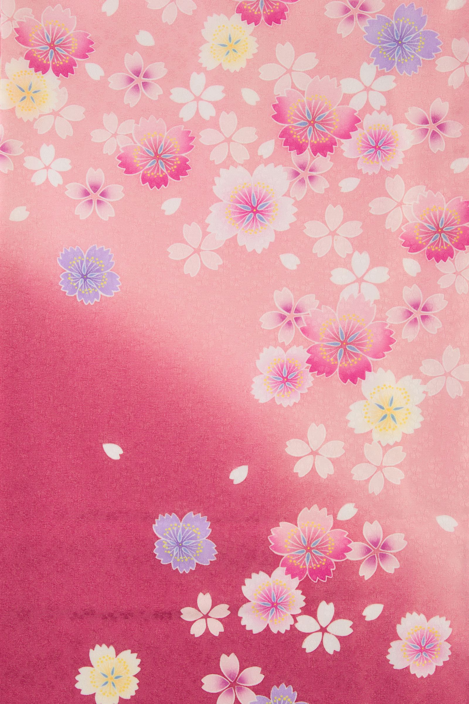 着物 no:815 商品名:ピンクボカシ いろ桜 | サクライラスト