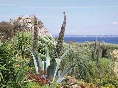 Jardin exotique et botanique de roscoff bretagne france jardins visiter jardin exotique - Jardins de bretagne a visiter ...