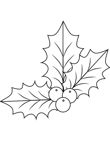 Xmas Holly Coloring Page From Christmas Decoration Category Select 24652 Printable Crafts Of Cartoons Nature Animals Bible And Many More