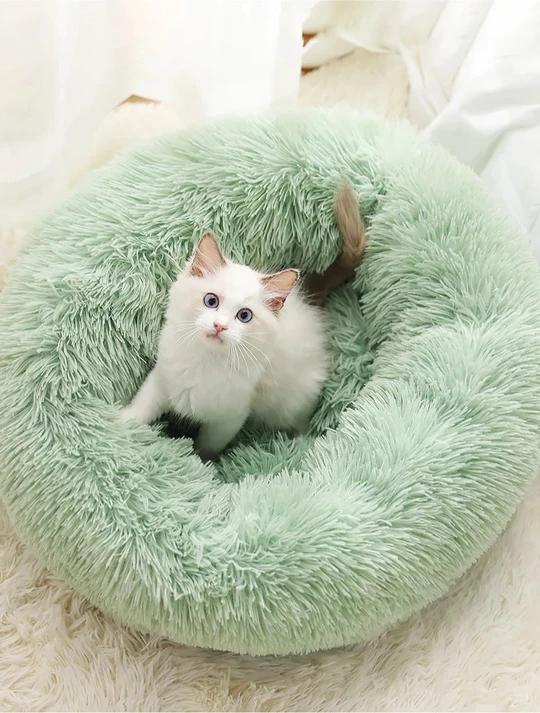 Calming Pet Bed Cute baby animals, Cute animals, Cute cats