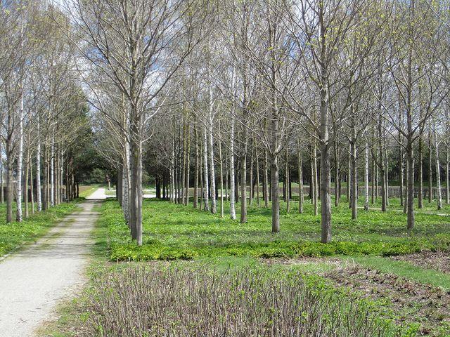 Messe Munich Riem Park Planting Flowers Landscape Architecture Plant Design