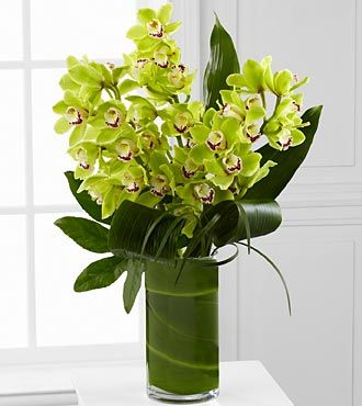 Large White Orchid Arrangement Realistic Orchids Set In White Vase Green Moss And Succulent A Orchid Flower Arrangements Orchid Arrangements Orchid Terrarium