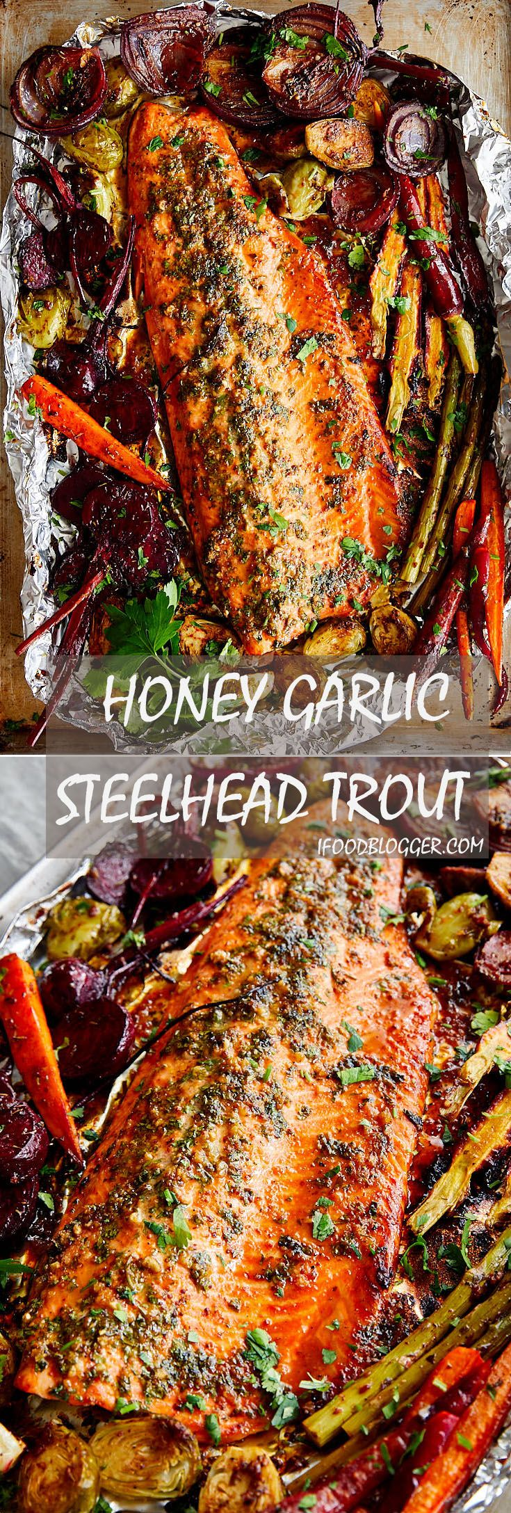 Baked Honey Garlic Steelhead Trout Recipe. The recipe is very simple and the dish is very flavorful. For best results, marinate the fish for at least two hours.| ifoodblogger.com -   24 fish recipes trout